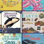 ocean books for preschoolers