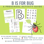 letter b activity guide